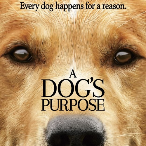 A Dog's Purpose thumbnail image