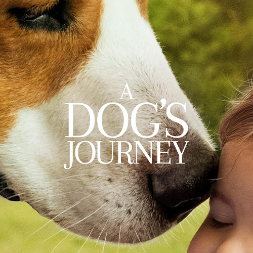 A  Dog's Journey thumbnail image image